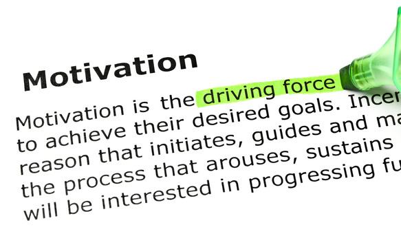 'Driving force' highlighted in green, under the heading 'Motivation'